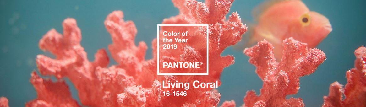 Pantone 2019 living coral tusmamparas valencia baño ducha
